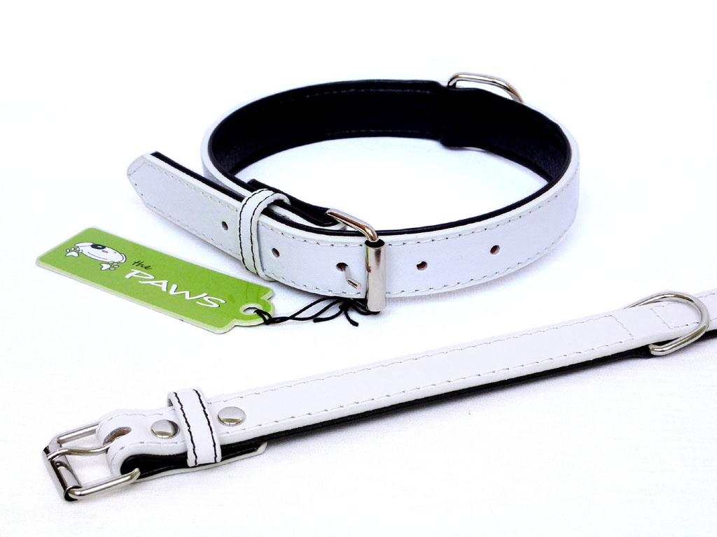Fusion Leather Collar Lead - White