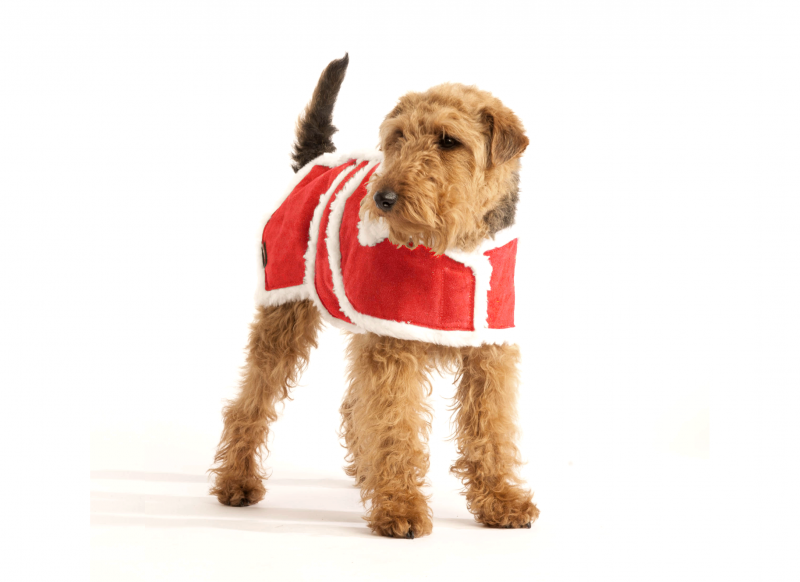 Christmas Red Wool Dog Coat