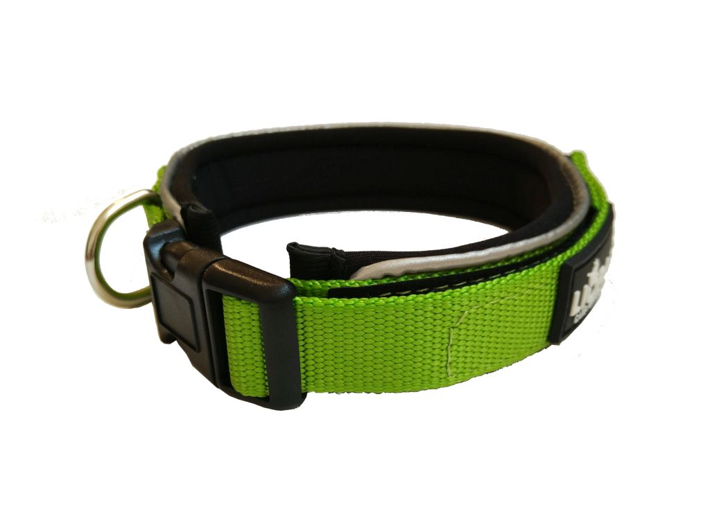 Liopard Padded Collar Lead - Lime