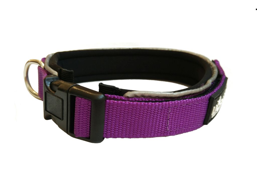 Liopard Padded Collar Lead - Purple