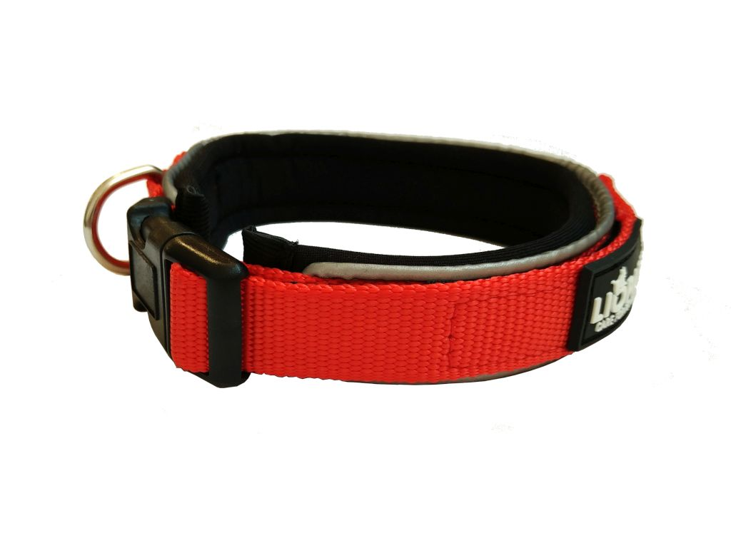 Liopard Padded Collar Lead - Red