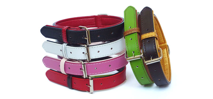 The Paws Leather Collars