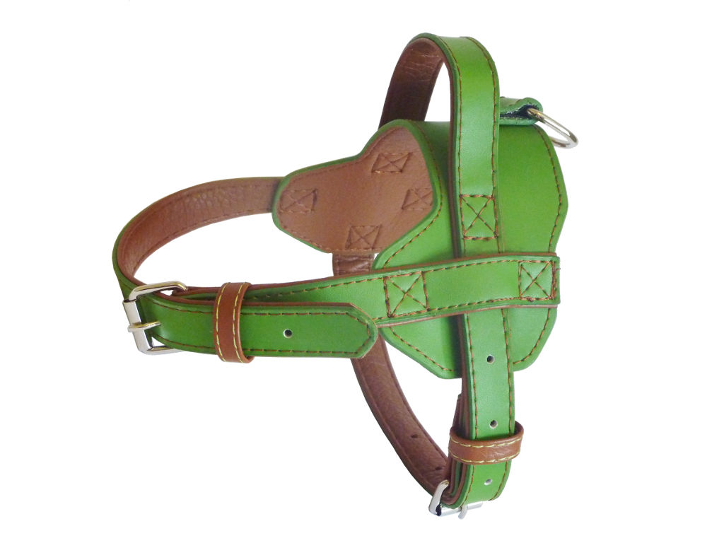 Fusion Leather Harness - Lime