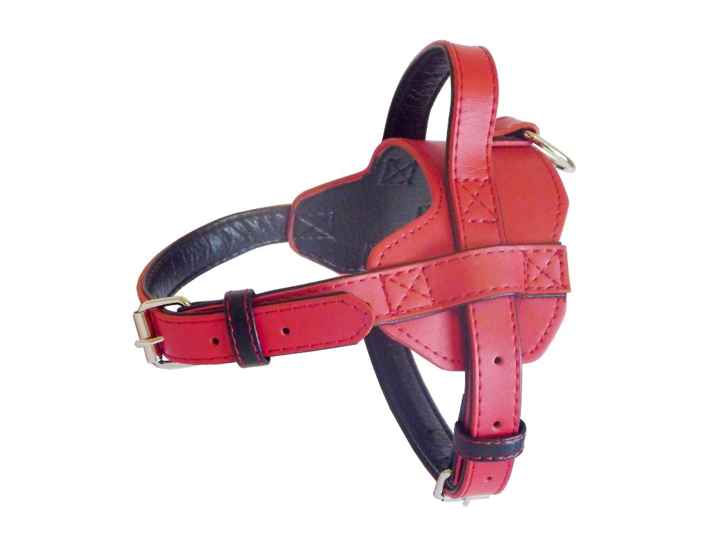 Fusion Leather Harness - Red