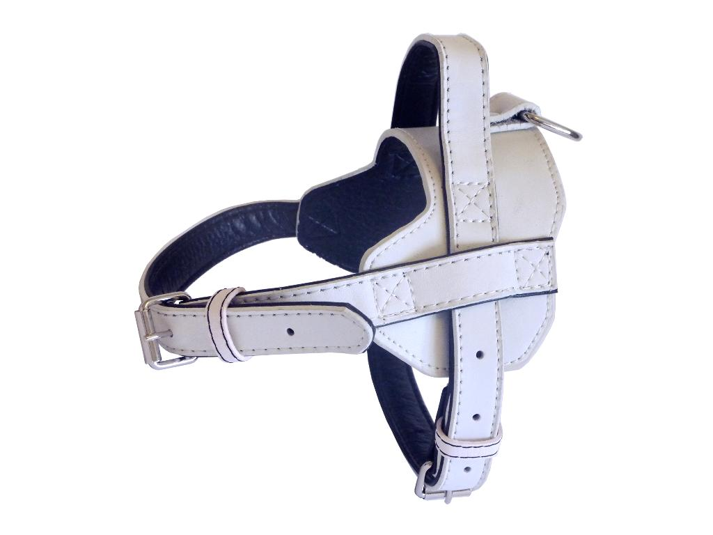 Fusion Leather Harness - White
